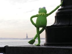 Kermitnyc