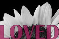 Loved_2