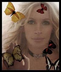 Jr_butterfly_8